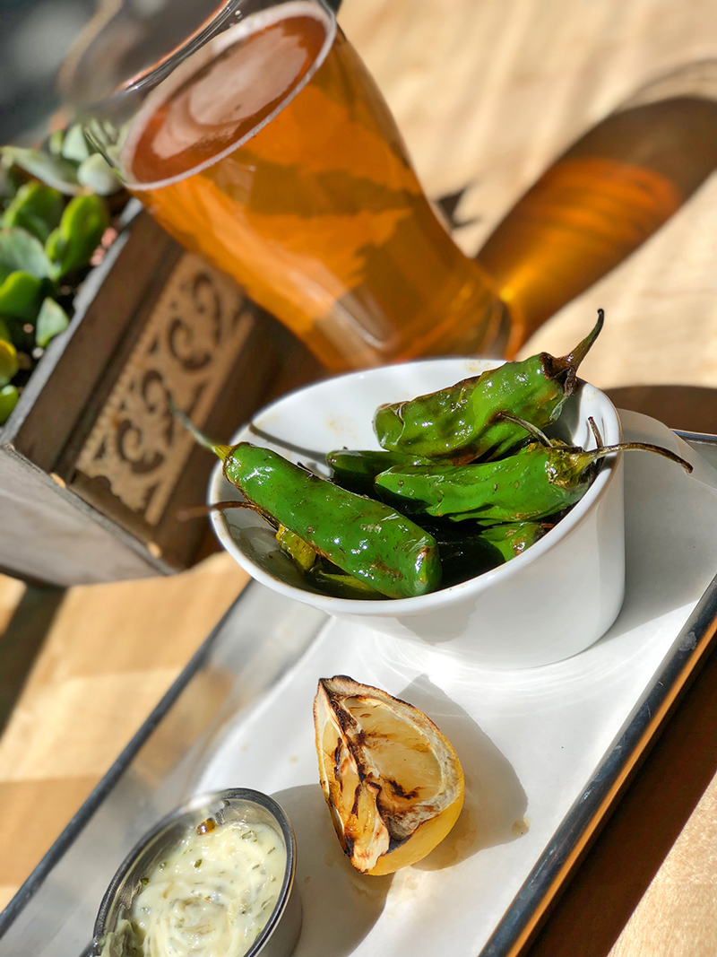 Hops & Sessions Padron Peppers